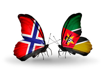 Two butterflies with flags Norway and Mozambique