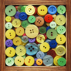 Button, collection of products