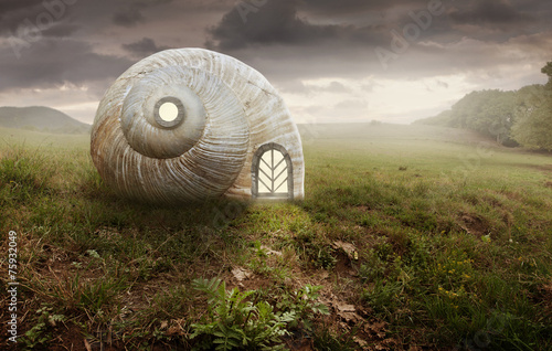 Leinwanddruck Bild Surreal artistic image with a Snail and shell house