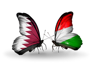 Two butterflies with flags Qatar and Hungary