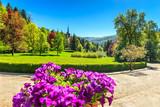 Ornamental garden and palace,Peles castle,Sinaia,Romania poster