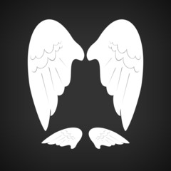 Wings , vector illustration