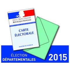ELECTIONS DEPARTEMENTALE 2015-01