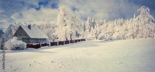 Winter morning in the Carpathian village - 75940604