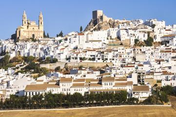 White town of Olvera, Cadiz (Spain)