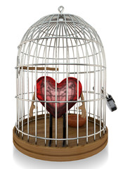 Heart in a Bird Cage