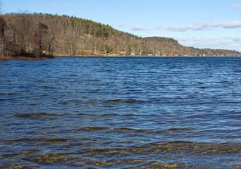 Swan Lake In Winter