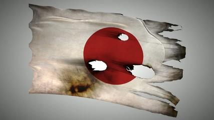 Japanese perforated, burned, grunge waving flag loop alpha