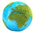 canvas print picture - grass planet