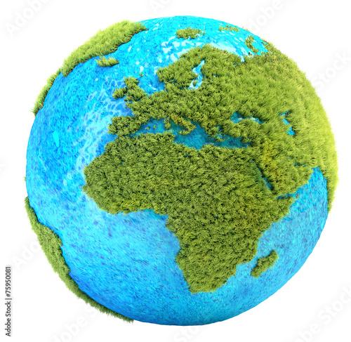 canvas print picture grass planet