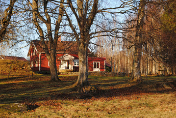 Ferienhaus am Waldrand