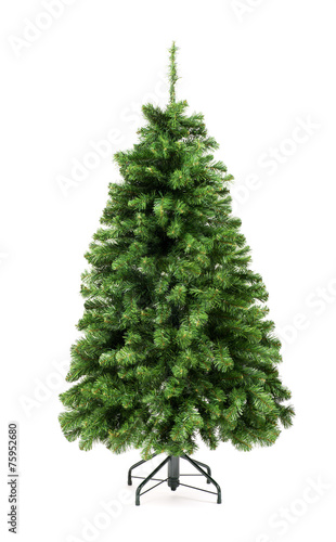 Leinwanddruck Bild Bare undecorated green Christmas tree