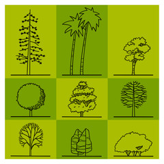 collection of tree drawing