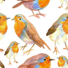 pencil sketch seamless pattern with flowers and bird robin