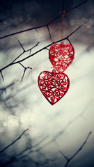 Red hearts on prickly branches.