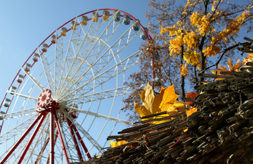 Autumn yellow leaves on background Ferris wheel at the park