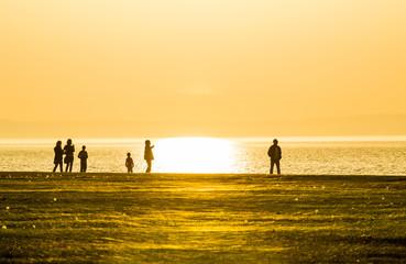 Sunny family walk on the beach