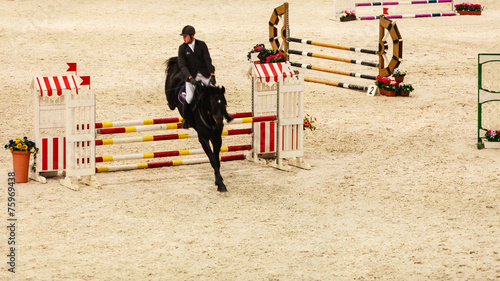 Fotobehang Paardrijden Equitation. show jumping, horse and rider over jump