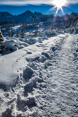 Winter path in the mountains at dawn