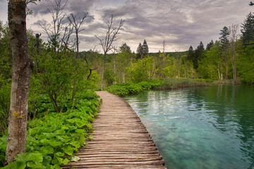 Dramatic wildness view in Plitvice National Park, Croatia