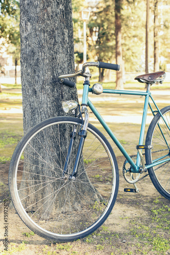 Keuken foto achterwand Fiets Old bicycle leaning against a tree