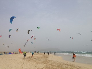 Kite surfs