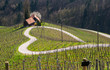 Leinwanddruck Bild - Road in a shape of a heart, Maribor, Slovenia