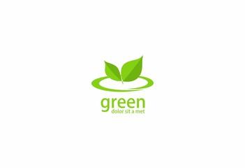 nature fresh green leaves