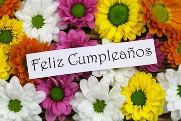 Feliz cumpleanos (happy birthday in Spanish) with flowers