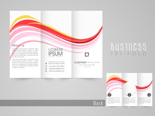 Professional three fold flyer, template and corporate brochure.