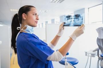 Serious dentist examining a x-ray