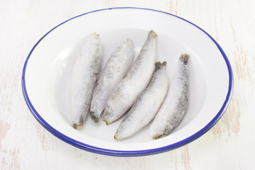 frozen sardines on white dish on white background
