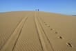 canvas print picture - Weg durch die Wüste (bei Walvisbay)