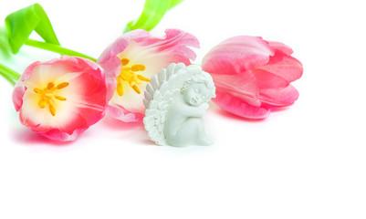 Schutzengel, Tulpen