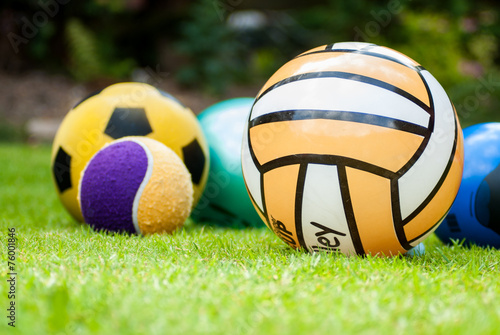 Collection of Five Balls in Grass - 76001846