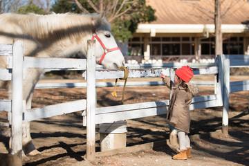 馬を指差す子供