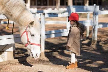 馬を見つめる少女