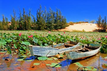 Beautiful lake with lotus and boats, Vietnam