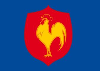 Blason XV de France de Rugby