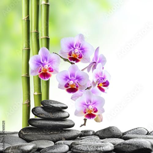 Papiers peints Detente zen stones