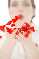 Sending Petals