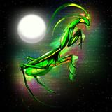 Praying Mantis Doodle Art poster