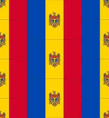 Moldova flag texture vector