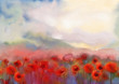 Red poppy flowers filed  watercolor painting - 76007480