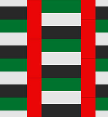 United Arab Emirates flag texture vector