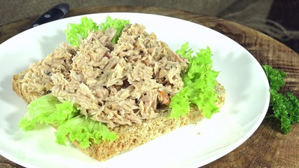 Seamless loopable Tuna Sandwich
