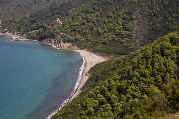 Wild beach on Skiathos ostorve