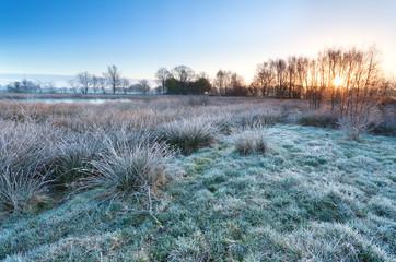 sunrise over marsh in cold morning
