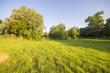 wiosenna łąka nieopodal wsi