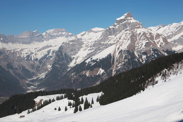 Panoramic view of the Swiss mountains (Titlis)